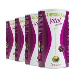 AMFORMULA Vital y Dieta